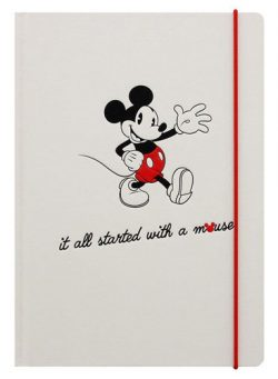 mickey mouse notes